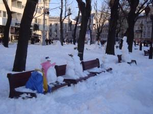 Львов в снегу