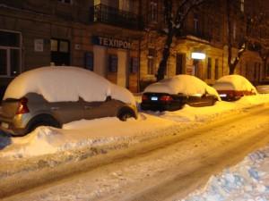 Львов засыпало снегом