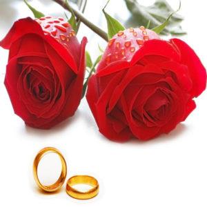 Сколько в Украине стоит зарегистрировать брак?