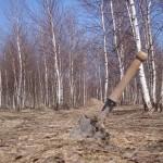 Коп на западе Украины. Сезон 2013 года