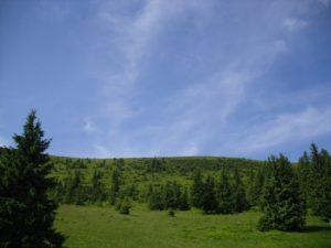 Карпаты. Национальный парк Синевир. День 1-й. Хребет Пишконя