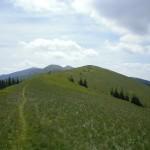 Карпаты. Национальный парк Синевир. День 2-й. Гора Негровец