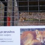 Львовский мини зоопарк