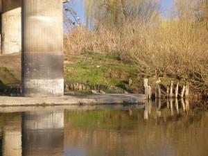 Луцк, под мостом