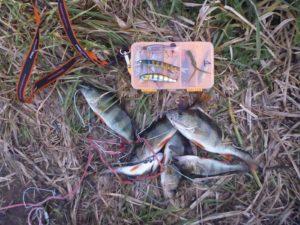 О рыбалке на речке Стыр в октябре