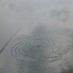 Поплавочная рыбалка на р.Стырь и дождь из прошлого